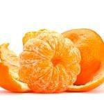 Il mandarino «Tardivo»