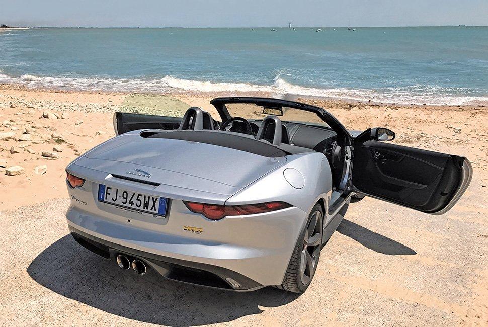 Jaguar_02_Port-Notre-Dame